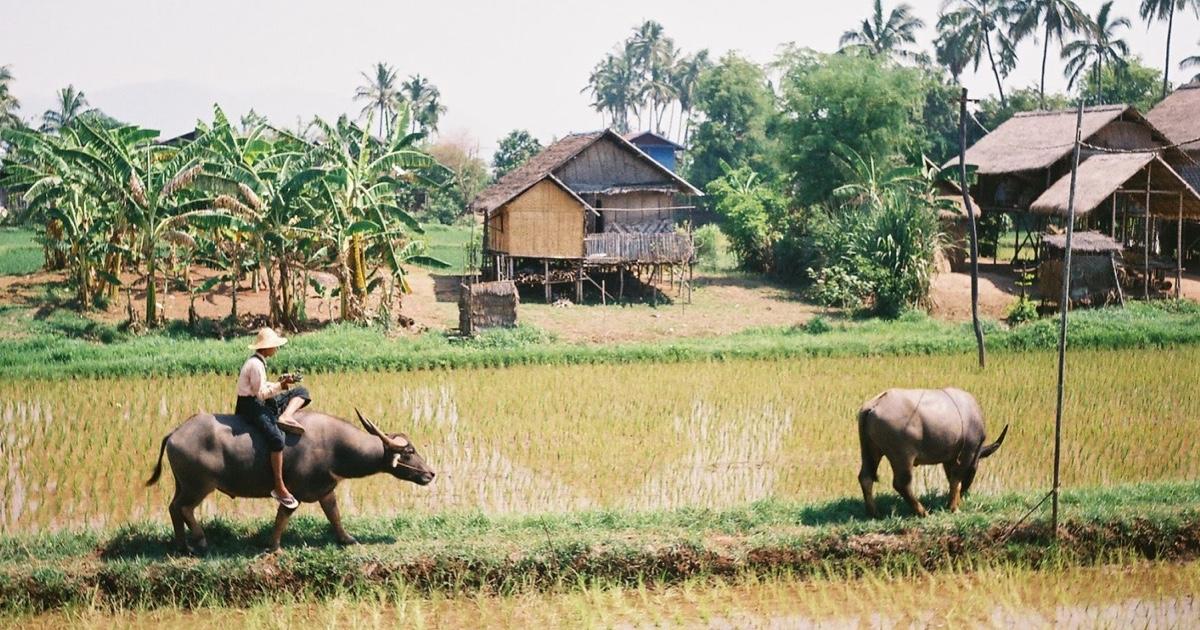 Být tady a teď na workcampu v Barmě