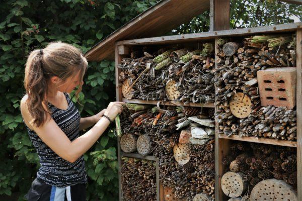 Eco Centre Horni Marsov