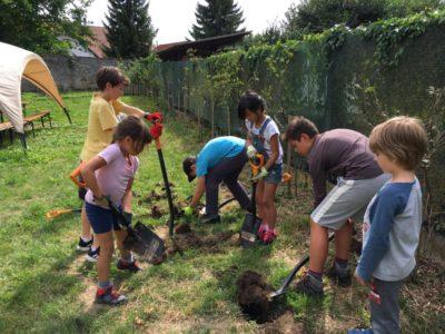 Family Workcamp on Educational Farm